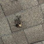 Asphalt Roof with Hail Penetration